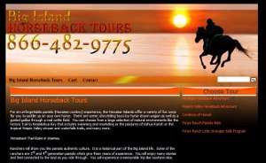 Big Island Horseback Tours